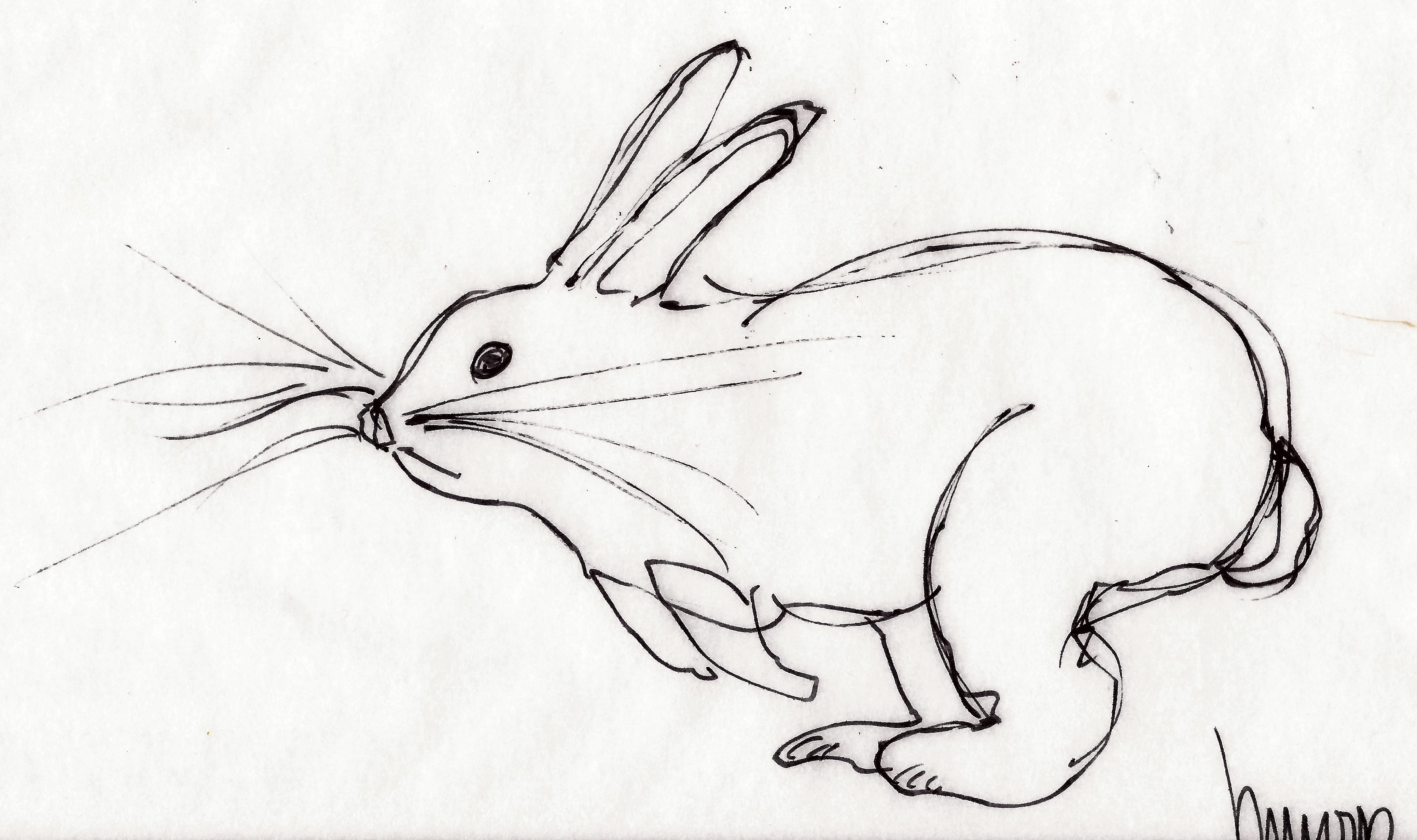 rabbit run m wood pen