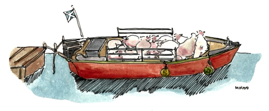 C&K COMPASS SHEEP BOAT FEB 16