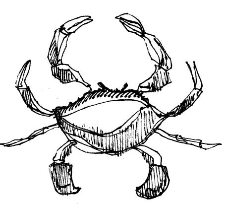 m wood crab