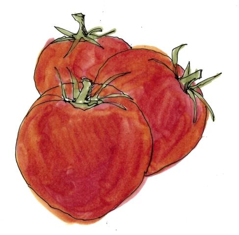 m wood tomatoes