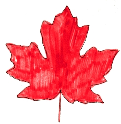 canada red maple leaf