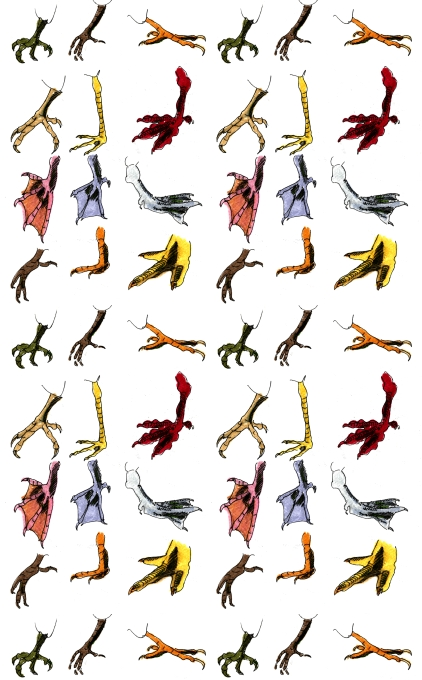 M WOOD PATTERN BIRDS FEET