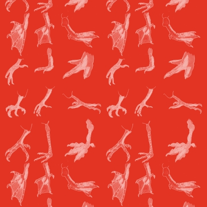 M WOOD PATTERN BIRD FEET RED