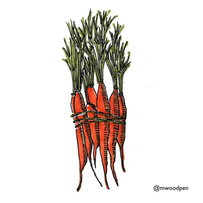 M WOOD FARMERS CARROTS
