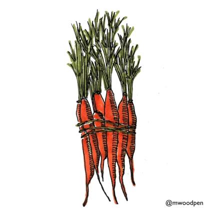 Carrot Bunch @mwoodpen